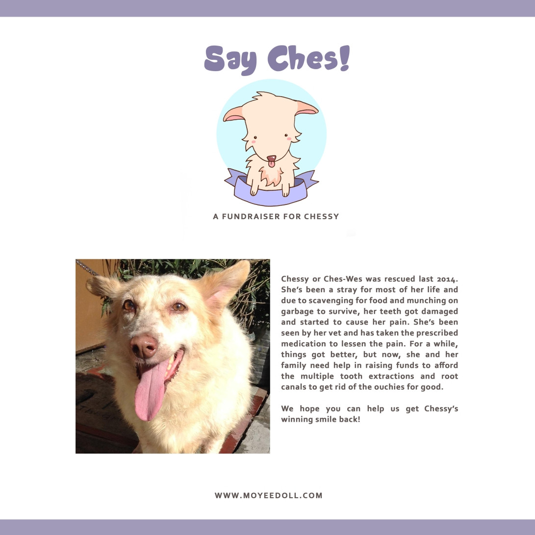 SAY CHES POSTER 1.jpg